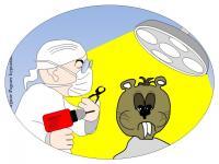 Cabinet d hypnose la rochelle peur du dentiste intervention dentaire virginie pagnier hypnotherapeute